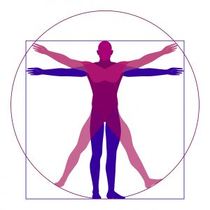 Fractal Wellness Golden Ratio Vitruvian Man
