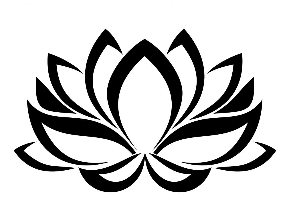 fractal wellness